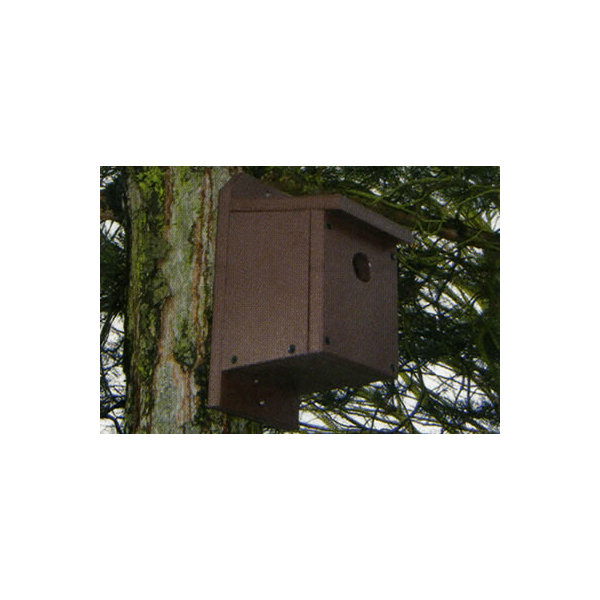 Square bird box